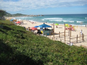 Mole Beach and the Surfing Competition